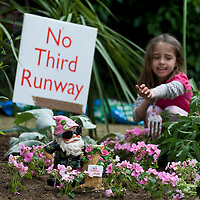 Sipson (Heathrow)  25th MAY The Chelsea Flower Show transplanted to Sipson, the village earmarked for demolition to make way for Heathrow's third runway. Garden designers, local residents, eco-activists, MP candidates, and Guerrilla Gardeners  teami up with Greenpeace to move and replant hundreds of plants from this year's show, to highlight the devastation the third runway will cause. ...***Standard Licence  Fee's Apply To All Image Use***.Marco Secchi /Xianpix. tel +44 (0) 845 050 6211. e-mail ms@msecchi.com or sales@xianpix.com.www.marcosecchi.com
