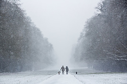 © Licensed to London News Pictures 01/03/2108, Cirencester, UK. Dog walkers brave the snow as it starts to fall in Cirencester Park , Gloucestesrire. Photo Credit : Stephen Shepherd/LNP