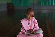 One young nun in pink studies in empty room, Compassion and Peace Nunnery, Inle Lake,  Nyaung Shwe