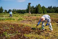 OUDEMIRDUM - De vrijwilligers , De Bevers, aan het werk in het natuurgebied. Golfclub Gaasterland ligt in Zuidwest-Friesland en heeft een schitterende 9 holes natuurbaan. COPYRIGHT KOEN SUYK