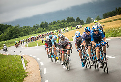 Peloton near Metlika during 5th Stage of 26th Tour of Slovenia 2019 cycling race between Trebnje and Novo mesto (167,5 km), on June 23, 2019 in Slovenia. Photo by Vid Ponikvar / Sportida