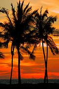 Waikoloa Beach Sunset