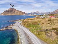 Aerial view of bald eagle flying over settlement of Dutch Harbor, Alaska, USA.