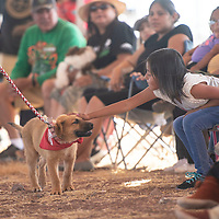 Shyanne Whitehorse, 6, right, reaches out to pet her dog Buddy as he is shown by her sister Shariah at the Bow Wow Dog Show Saturday, August 24 as part of the Central Agency Navajo Fair and Rodeo in Chinle. Buddy is a four month old Chinle Rez pup training to be a sheep herder.