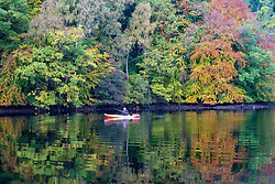 Pitlochry, Scotland, UK. 12 October 2020. Autumn colours on trees and member of public in kayak on Loch Faskally in Pitlochry.  Iain Masterton/Alamy Live News