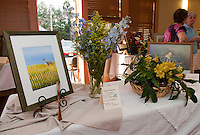 Art 'N Bloom presented by Opechee Garden Club at Gilford Public Library March 22, 2012.