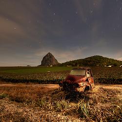 Beerwah Pineapple Fields, Beerwah, Sunshine Coast, Queensland, Australia