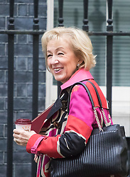 Downing Street, London, October 25th 2016. Environment, food and Rural Affairs Secretary Andrea Leadsom arrives at 10 Downing Street for the weekly cabinet following a Heathrow Third Runway Sub-Committee meeting at the same venue.