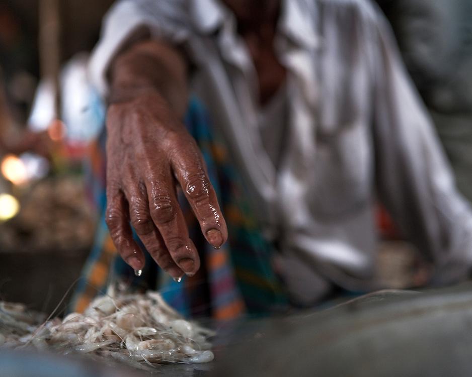Close-up of Shrimp seller in a fish market