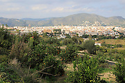 View over orange trees to town of Pego, Marina Alta, Alicante province, Spain