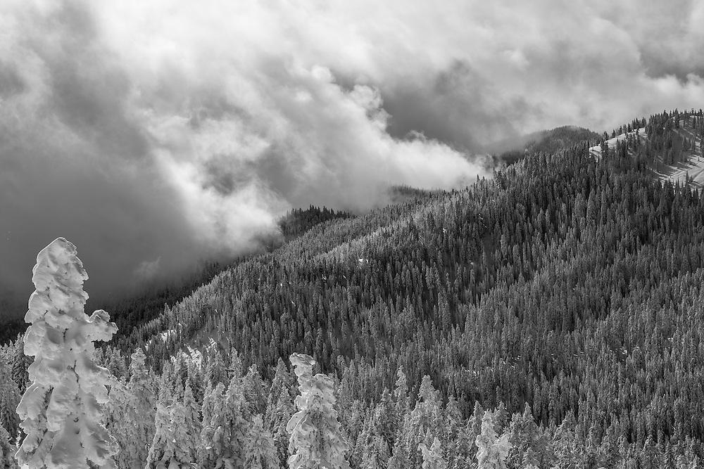 Mt. Ashland.  Oregon.  December, 2015.