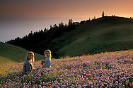 Mother and daughter in field of wildflowers on hillside at sunset, Bolinas Ridge, Mount Tamalpais, Marin County, California
