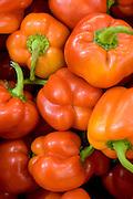 A pile of fresh, ripe red Bell pepper (Capsicum annuum)