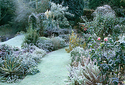 Winter borders at Upper Mill Cottage