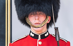 © Licensed to London News Pictures. 25/07/2019. London, UK. A Guardsmen in the Nijmegen Company<br /> of the Grenadier Guards feels the heat as he stands on duty outside Buckingham Palace in central London. Today is expected to be another hot day with record breaking temperatures in parts of the UK  Photo credit: Peter Macdiarmid/LNP