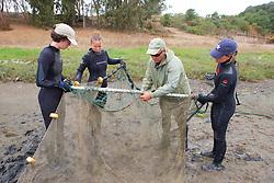 Sean Van Sommeran & Earthwatch Team Tying Nets Together