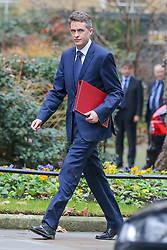 © Licensed to London News Pictures. 05/02/2019, London, UK. Gavin Williamson - Secretary of State for Defence arrives in Downing Street for the weekly Cabinet meeting. Photo credit: Dinendra Haria/LNP