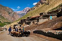Tadjikistan, Asie centrale, Monts Fan, la vallée du Yagnob // Tajikistan, Central Asia, Fann Mountains, Yagnob valley