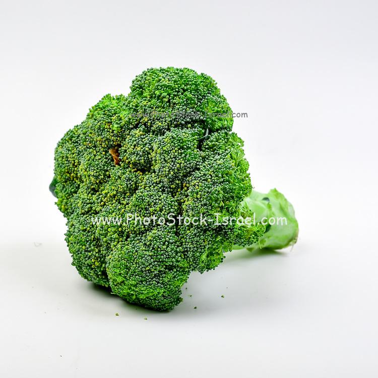 Fresh and organic Broccoli on white background