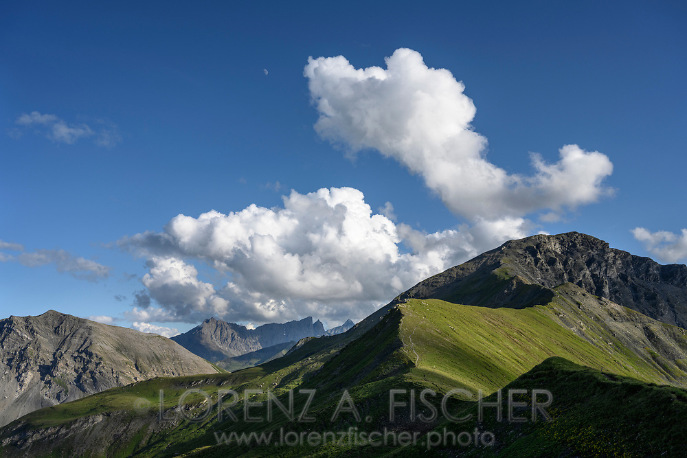 Blick in Richtung Curver Pintg auf einer Wanderung von der Alp da Stierva auf den Curver Pintg, Savognin, Parc Ela, Graubünden, Schweiz<br /> <br /> View towards Curver Pintg on a hike from the Alp da Stierva to the Curver Pintg, Savognin, Parc Ela, Grisons, Switzerland