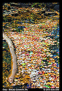 Fallen Leaves In The Creek<br /> Pine Valley Covered Bridge - Bucks County, PA<br /> October 2014