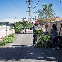 Part of the clean-up crew in an alley in the Mossman neighborhood, Wednesday, Sept. 12, 2018. They are graduates of Rehoboth McKinley Christian Substance Abuse Treatment Center and are removing trees, shrubs and brush from the alleyways as a preventative measure to curb break-ins in the area.