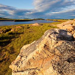 Salt marsh on the edge of the Essex River in Essex, Massachusetts.  Cox Reservation - Essex County Greenbelt Association.