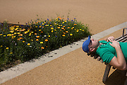 A sleeping spectator and English garden flowers during the London 2012 Olympics. London's Olympic Park, at just under a square mile, is the largest new park in the city for more than 100 years. The planting of 4,000 trees, 300,000 wetland plants and more than 150,000 perennial plants plus  nectar-rich wildflower make for a colourful setting for the Games. This land was transformed to become a 2.5 Sq Km sporting complex, once industrial businesses and now the venue of eight venues including the main arena, Aquatics Centre and Velodrome plus the athletes' Olympic Village. After the Olympics, the park is to be known as Queen Elizabeth Olympic Park.