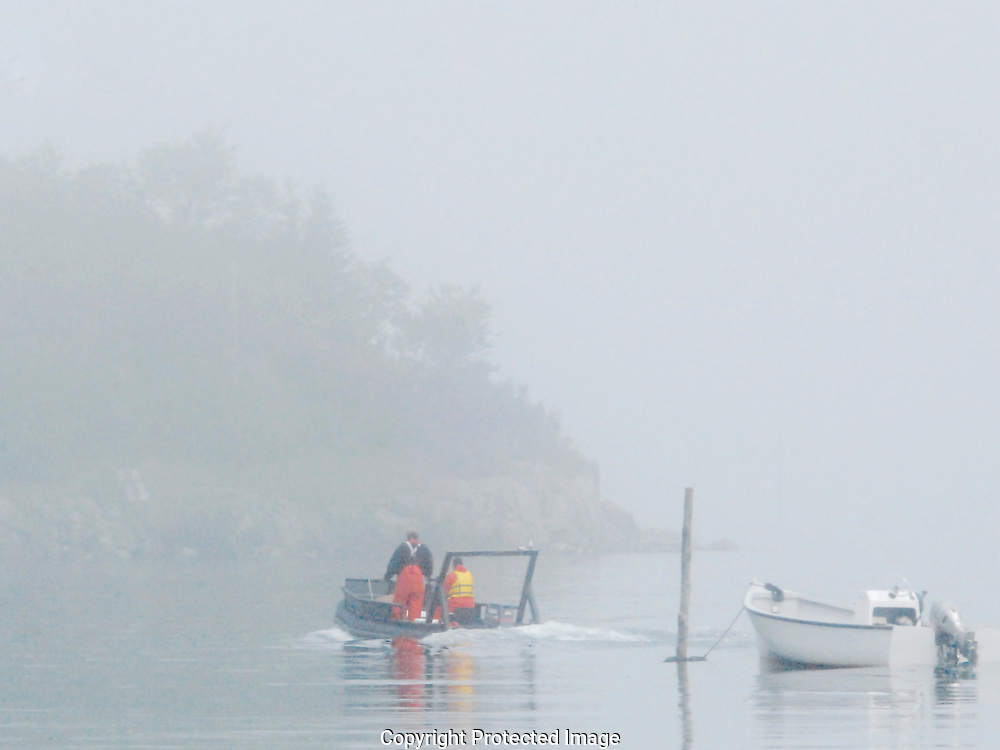 Two old salts in orange overalls head out as the fog begins to clear in New Brunswick, Canada.