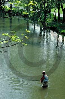 PA landscapes Fishing Trout, Yellow Breeches Creek, Cumberland Co., PA
