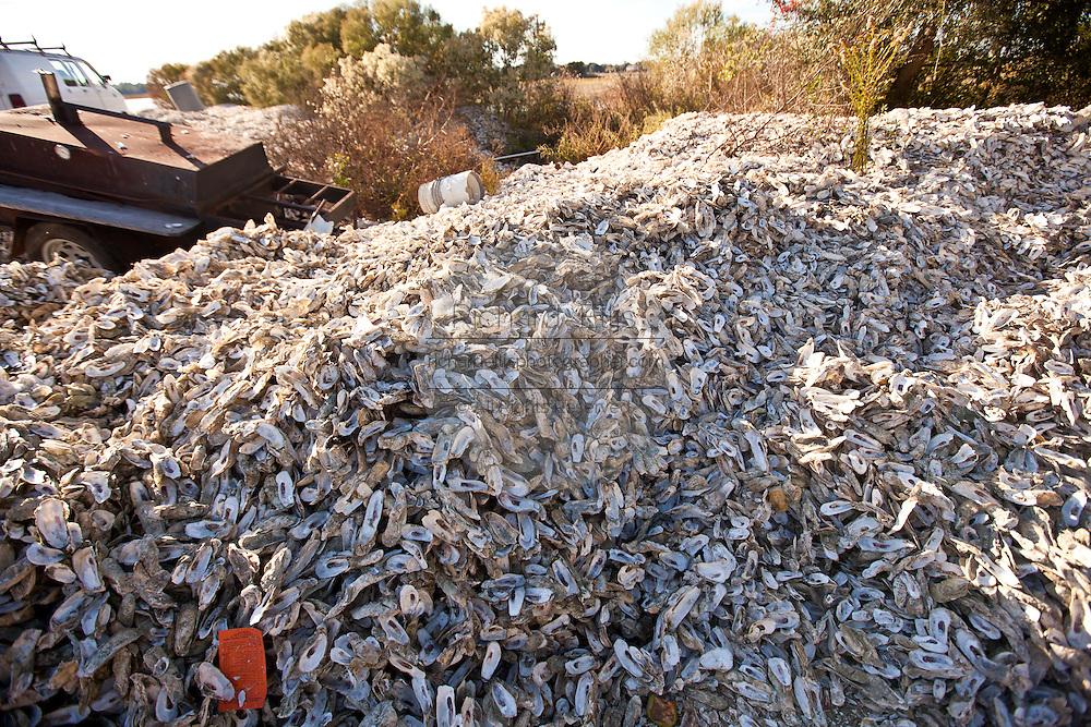 Oyster shells piled up at Bowen's Island restaurant along the Folly River, Charleston, SC.
