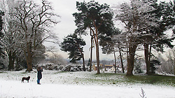Hampstead Heath, London, January 17th 2016. Runners and dog walkers enjoy the early morning snow on Hampstead heath in London, where about an inch-and-a-half fell overnight. PICTURED: A woman photographs the distand London skyline from a snowy Hampstead Heath.. ///FOR LICENCING CONTACT: paul@pauldaveycreative.co.uk TEL:+44 (0) 7966 016 296 or +44 (0) 20 8969 6875. ©2015 Paul R Davey. All rights reserved.