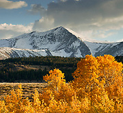 Mount Warren with Aspens and Clouds, Inyo National Forest, California