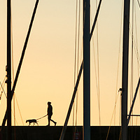sunrise walk among the boats