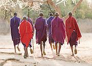 Maasai tribesmen in traditional dance called Adumu, a jumping competition. Near Amboseli National Park, Kenya