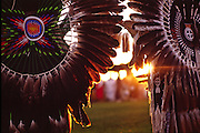 Close-up view of feathers in Native American Indian tribal dress, New Mexico.