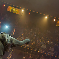 Boy performs a jumping trick with elephants trained by his father Rene Caselly during the premiere of the new show titled Lights of the Universe in Budapest, Hungary on October 05, 2013. ATTILA VOLGYI