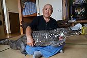 Man lives  with 2 meter alligator