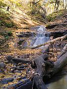 Fall colors are on vivid display at Parfrey's Glen State Natural Area, near Baraboo, Sauk County, Wisconsin.