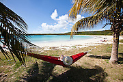 Hammock strung from coconut palms Red Beach (Playa Caracas) in Vieques Island, Puerto Rico.