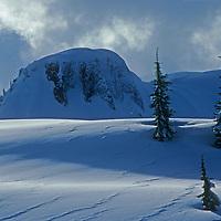 Mountains and snow-flocked trees poke through deep powder snow in Mount Baker Wilderness, adjacent to Washington's Mount Baker Ski Area.