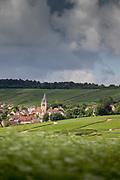 View of village surrounded by vineyards under overcast sky, Ville-Dommange, France