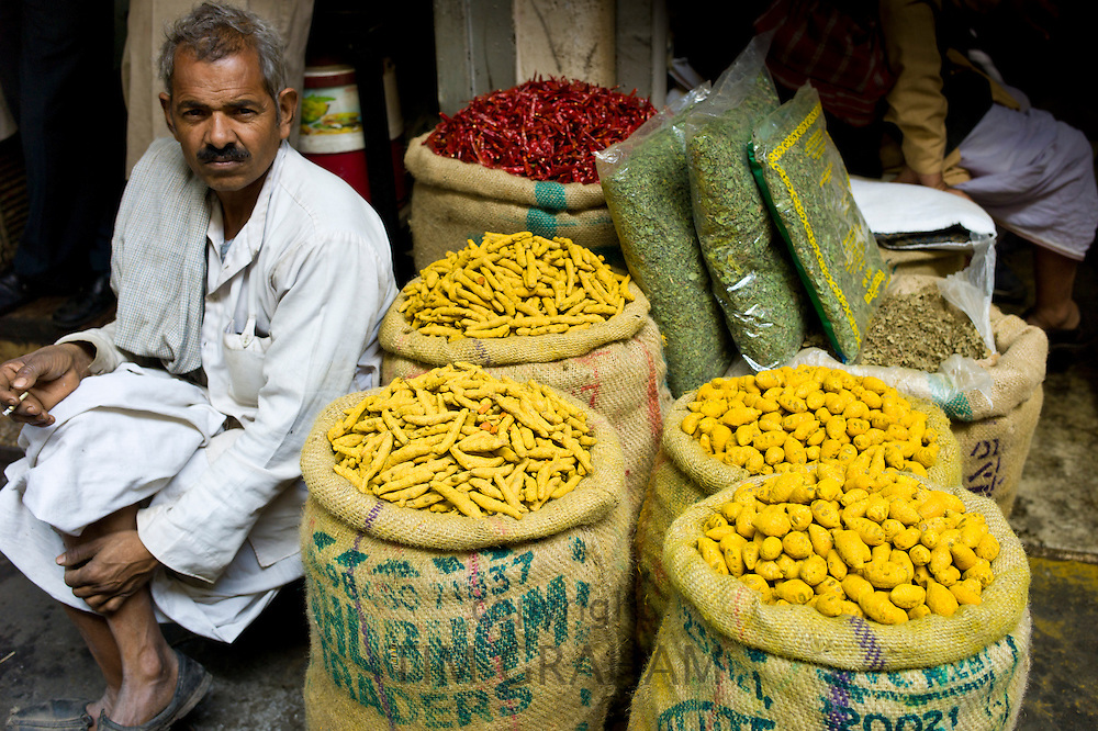 Yellow turmeric and red chillies on sale at Khari Baoli spice and dried foods market, Old Delhi, India