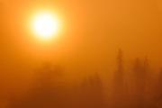 FOg at sunrise at Lyons Lake<br /> Whiteshell Provincial Park<br /> Manitoba<br /> Canada