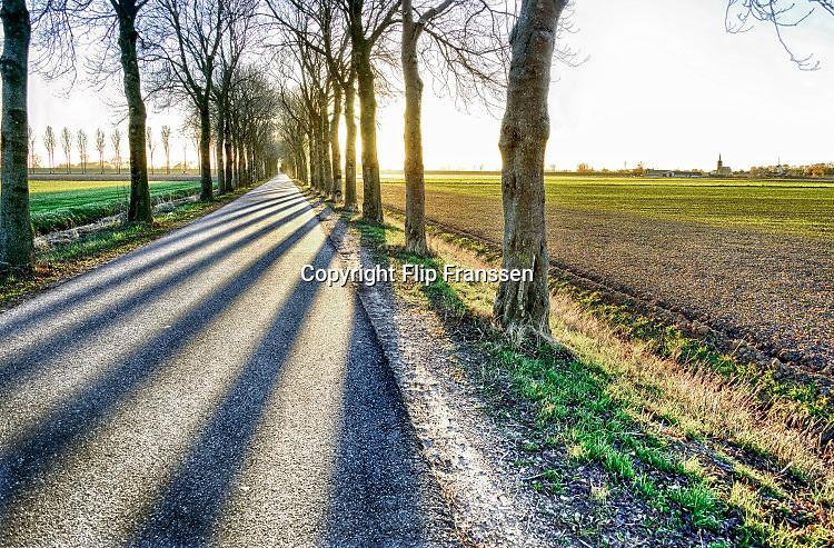 Nederland, Batenburg, 28-2-2020Even buiten het dorp is een landweg met aan weerszijden bomen waar de zon tussendoor schijnt Foto: Flip Franssen