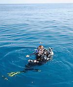 Scubadiver in the water