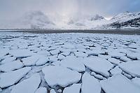 Snow covered shoreline of Flakstadpollen at lowtide, Flakstadøy, Lofoten Islands, Norway