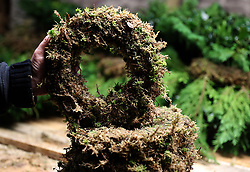 Moss rings being used to make Christmas wreaths at the Smiddy Farm Shop near Doune, Stirling.