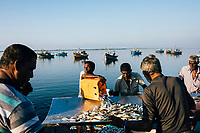 Jaffna, Sri Lanka -- February 9, 2018: Fishermen taking in their daily catches on the Jaffna Peninsula.