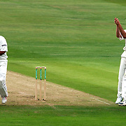 England's Matthew Hoggard celebrates his wicket of India's Virender Sehwag with Michael Vaughan, caught behind by Andrew Flintoff.